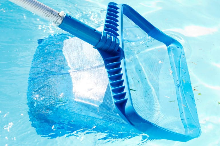 Cleaning and maintenance of outdoor swimming pool with blue plastic skimmer net on metal pole.